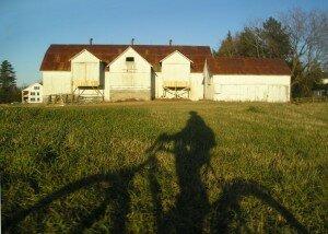 Bike shadows on the farm