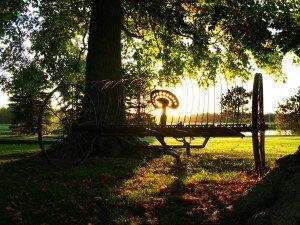 Autumn sunset on thresher